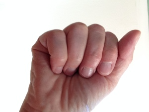 A 'Fist of five'