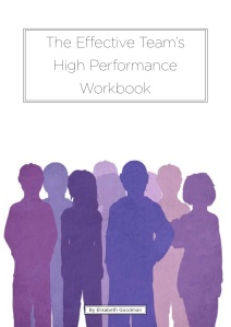 The Effective Team's High Performance Workbook, RiverRhee Publishing, 2014