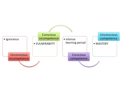 Variation on competency consciousness model
